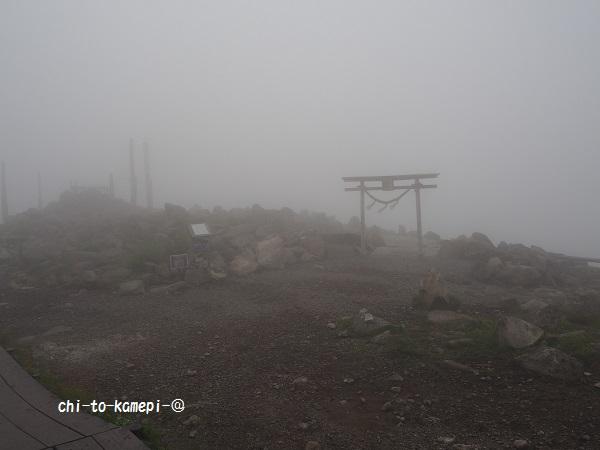 山頂P7152585.jpg