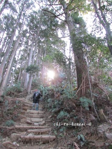 IMG_3480階段登り.jpg